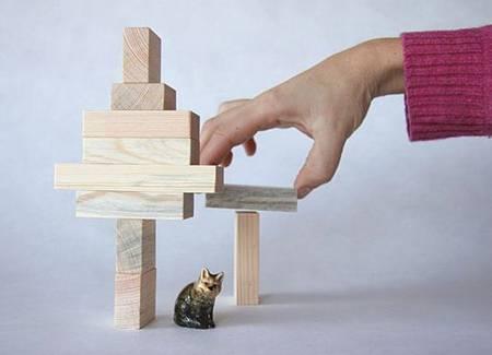 Beetle Blocks Creative Building Blocks or Wood Waste
