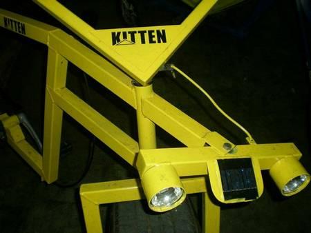 Kitten real man's cool bicycle