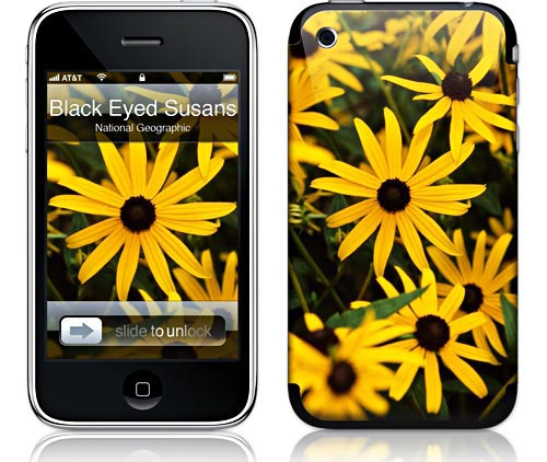 Gelaskins Cell phone and MacBook skins National Geographic Society