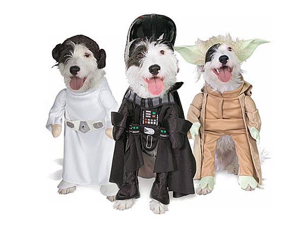 Darth Vader is a dog