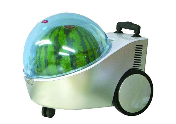 Marugoto Tamachan Watermelon Portable Cooler