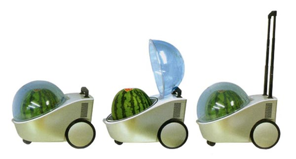 Marugoto Tamachan Portable Cooler Not Only for Watermelon