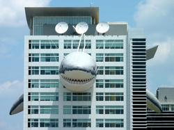 Shark Stalking on Discovery Channel Building