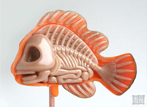 Disney Finding Nemo Anatomical CollectibleToy Model