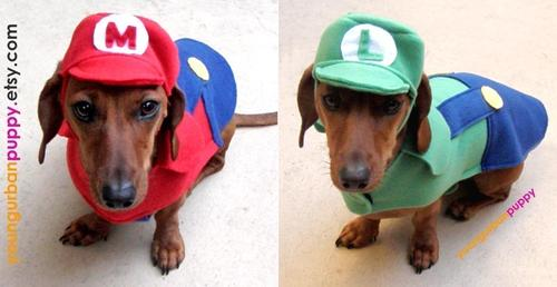 Super Mario Bros Series Dog Costume