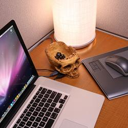 Terrible Skull 4-Port USB Hub