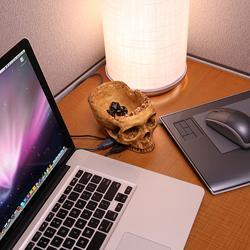 Terrible Skull 4-Port USB Hub