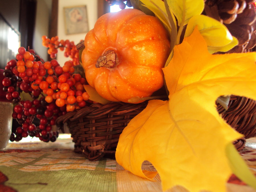Happy Thanksgiving to Our Readers