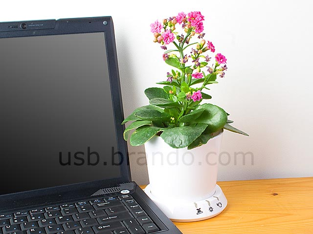 Usb flower pot help you look after your plant gadgetsin - How often should you water your garden ...