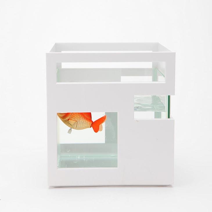 Image Result For Build A Aquarium