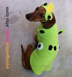 Angry Birds Dog Costume