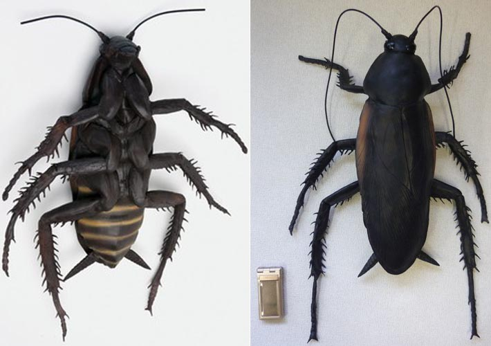 Mega Cockroach Model Not From Fallout Series Gadgetsin