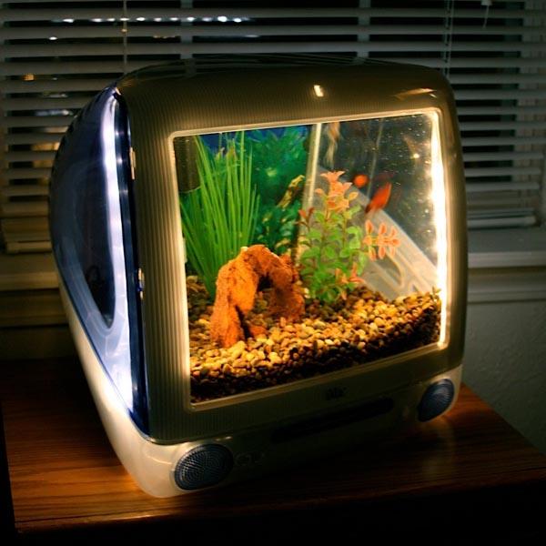 Imacquarium fish tank built with imac g3 gadgetsin Fish tsnks