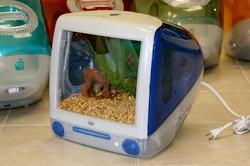 iMacquarium Fish Tank Built with iMac G3