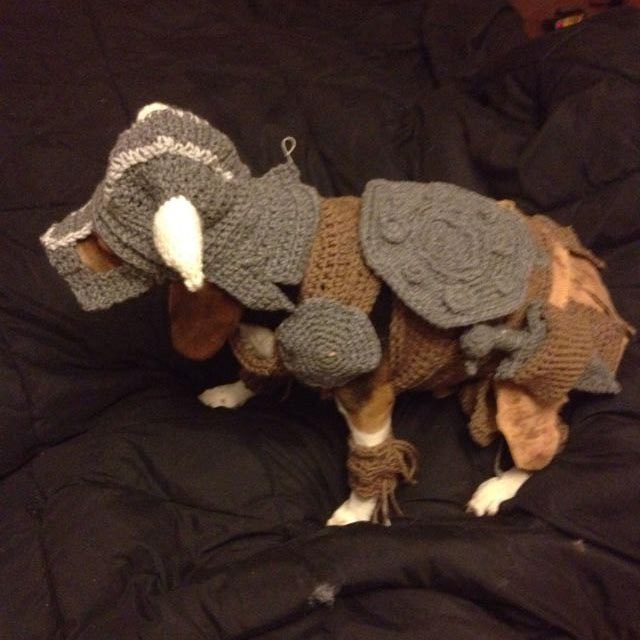 The Elder Scrolls V Skyrim Inspired Dog Costume