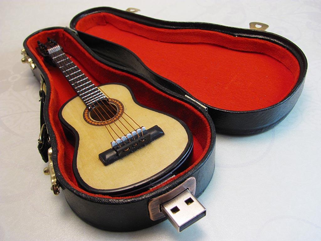 guitar usb flash drive with carrying case gadgetsin. Black Bedroom Furniture Sets. Home Design Ideas