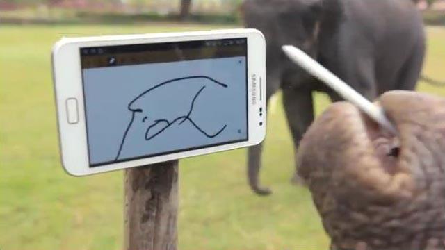 The Elephant Likes Samsung Galaxy Note