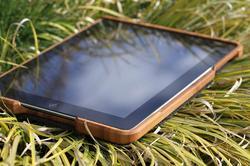 Grove Bamboo iPad 3 Case