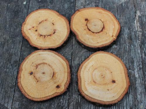 Handmade Wood Coaster Set