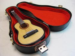 Guitar USB Flash Drive with Carrying Case