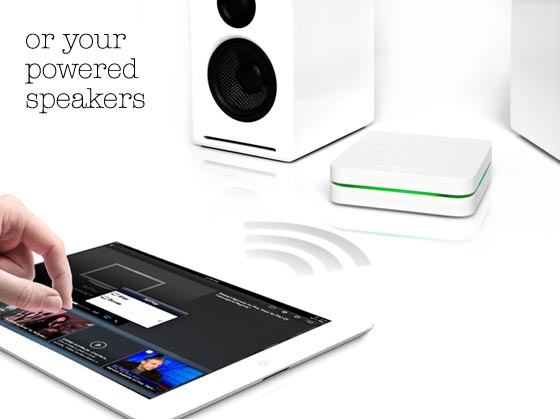 playGo AP1 the Ultimate AirPlay Audio Receiver