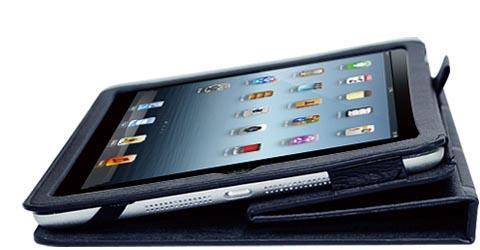 Ozaki O!coat-Wisdom iPad Mini Case