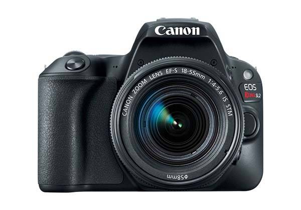 Canon EOS Rebel SL2 Entry-Level DSLR Camera