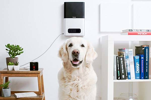 Petcube Bites WiFi Pet Camera with Treat Dispenser