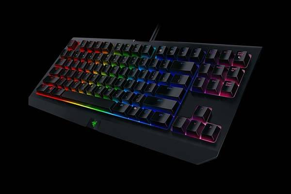 Razer BlackWidow TE Chroma V2 Mechanical Gaming Keyboard