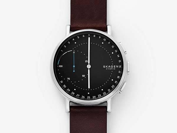 Skagen Signatur Connected Hybrid Smartwatch