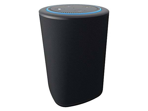 VAUX Portable Wireless Echo Dot Speaker