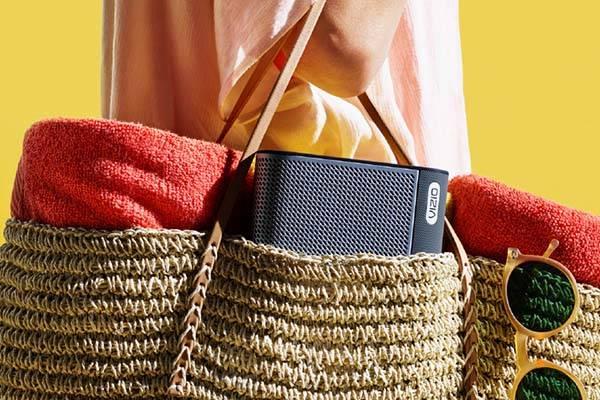 Vizio SmartCast Crave Wireless Chromecast Speaker