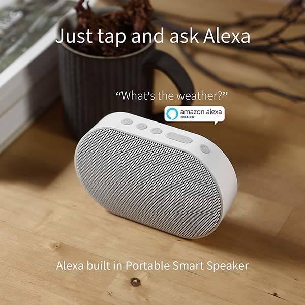 GGMM E2 Portable Wireless Alexa Speaker