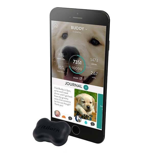 FitBark 2 Dog Fitness Tracker