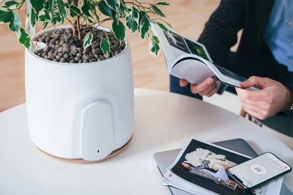 Natede Natural Smart Air Purifier