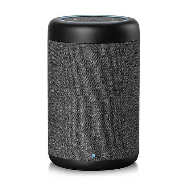 GGMM D6 Portable Speaker for Echo Dot 2