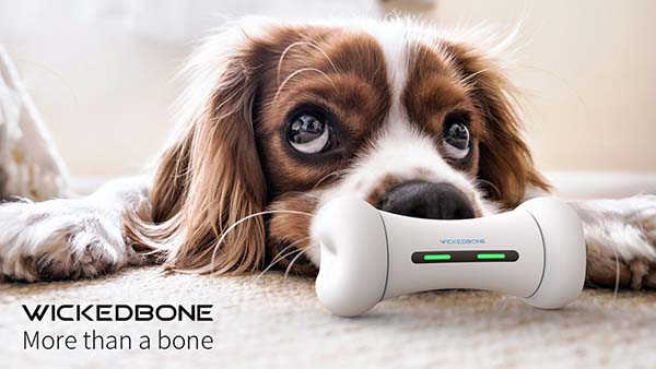 Wickedbone Smart Interactive Dog Toy