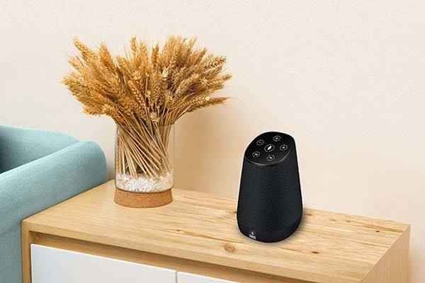 August Venus Alexa Enabled Wireless Smart Speaker