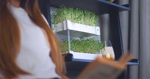 EcoQube Sprout Hydroponic Stackable Micro Garden