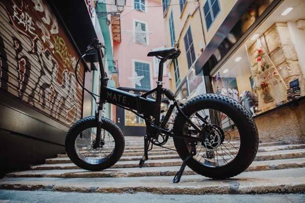 Mate X Full-Loaded Folding Electric Bike