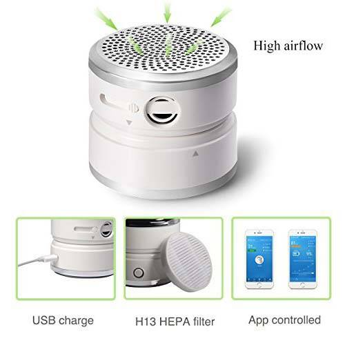 FitAir Portable Air Purifier with True HEPA Filter