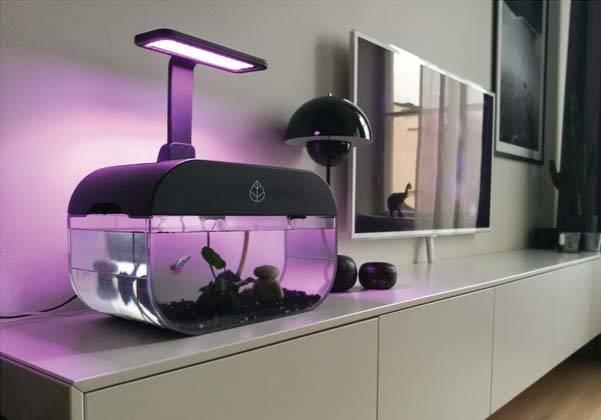 EcoGarden Smart Aquarium with Mini Indoor Garden Forms Interactive Ecosystem