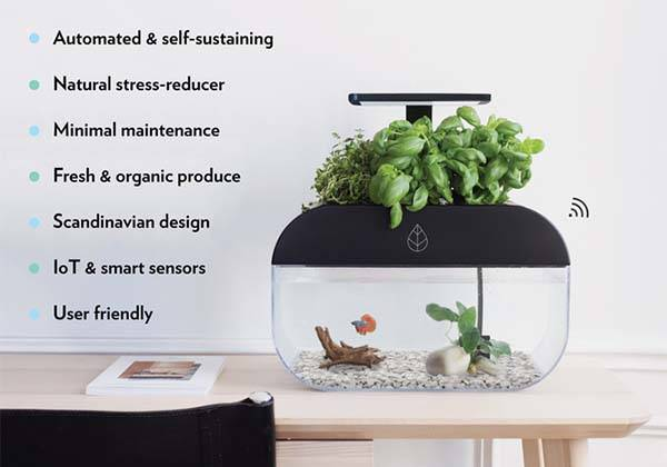 EcoGarden Smart Aquarium with Mini Indoor Garden Forms Interactive Ecosystem