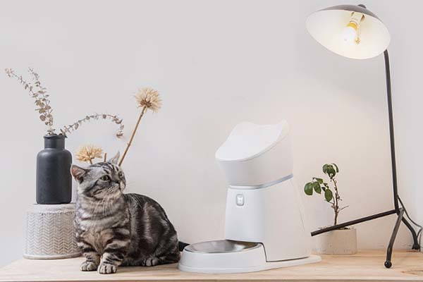 Q1 Smart Pet Feeder Feeds Your Dog or Cat in a Healthier Way