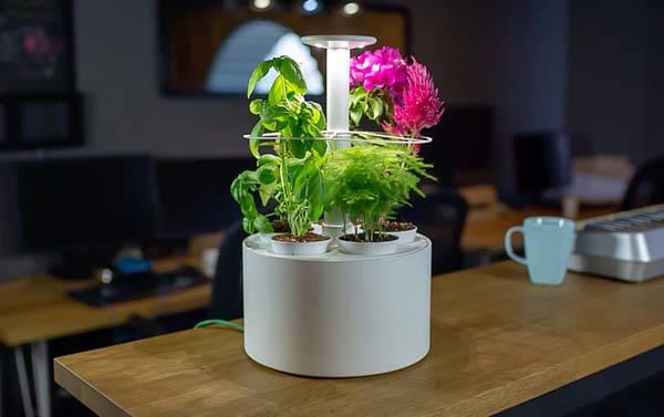 Plantone Diversity Smart Mini Indoor Garden