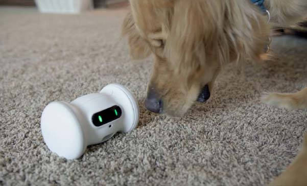 VARRAM Smart Robot For Pets