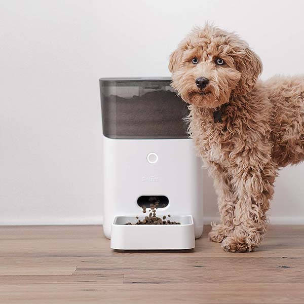 Petnet SmartFeeder Smart Pet Feeder Supports Amazon Alexa and Google Assistant