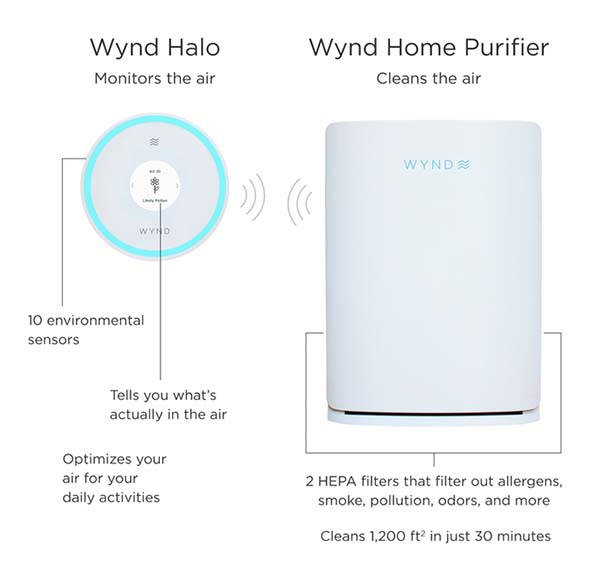 Wynd Halo + Home Smart Air Purifier