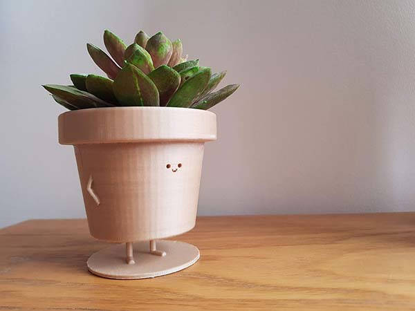 The Cute 3D Printed Plant Pot Character with Two Optional ...