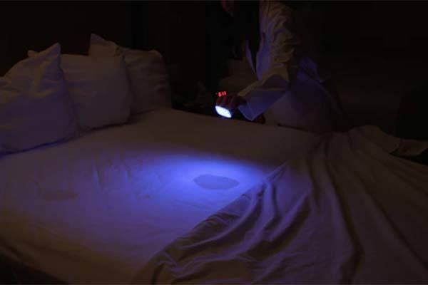 ReveaLED Compact Multiwavelength UV Flashlight